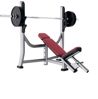 Life Fitness Signature Series Olympic Incline Bench Fitness Superstore