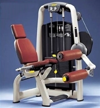 Technogym Selection Seated Leg Curl (Remanufactured)